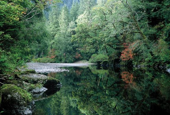 Wilson River 2