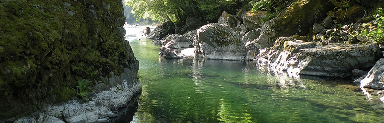 Wilson River Swimming Hole - Banner
