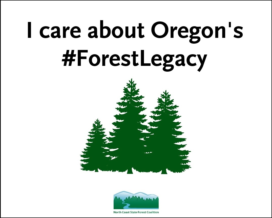 #ForestLegacy_Handout