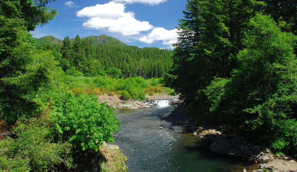 Wilson River, Oregon North Coast. Photo by Tyson Gillard, Outdoor Project.